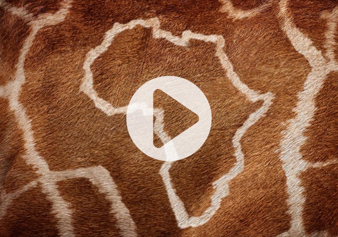 African Overlook Commercial